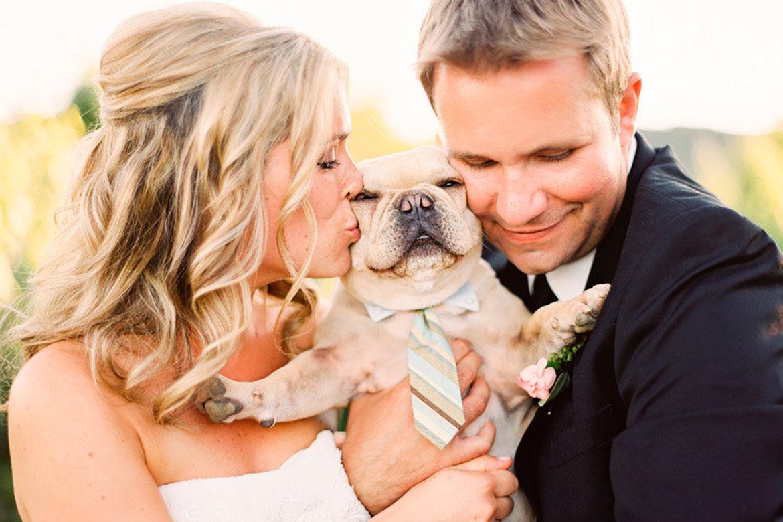 ¿Cómo organizar una boda Pet Friendly?