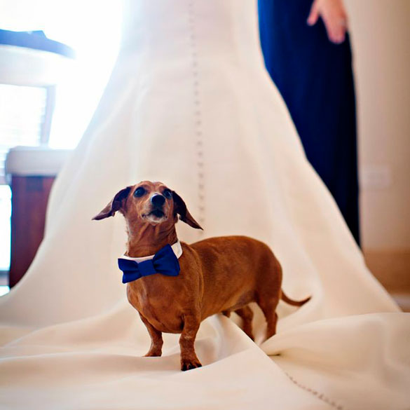 Foto por Bridal Guide