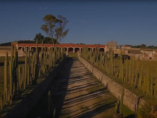 Hacienda Los Olivos: Un lugar encantador y lleno de historia
