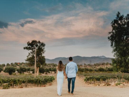 Fotos que reflejan tu estilo y personalidad: Almazara Rancho Olivares