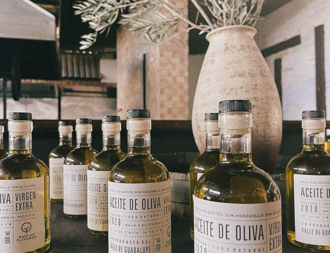 El Aceite de Oliva: La esencia de La Almazara